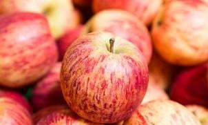 Vitamina P, e Mirë për Zemrën, Gjakun dhe Trurin