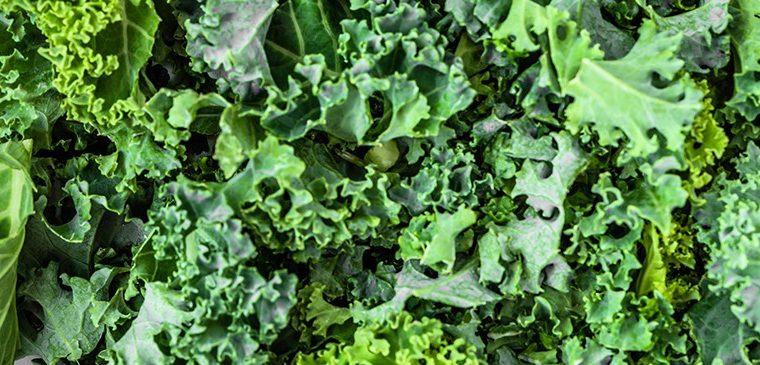 Njihuni me Lakrën Kale; Receta